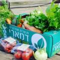 מוצרי מזון פירות וירקות אורגניים