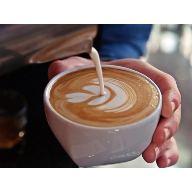 100 קפסולות קפה ג'ו בטעמים לבחירה וגם כוס טרמית מתנה -תואמות Nespresso זוכה פרס מוצר השנה -הקפה האיכותי בקטגוריה 5.5 גרם לקפסולה