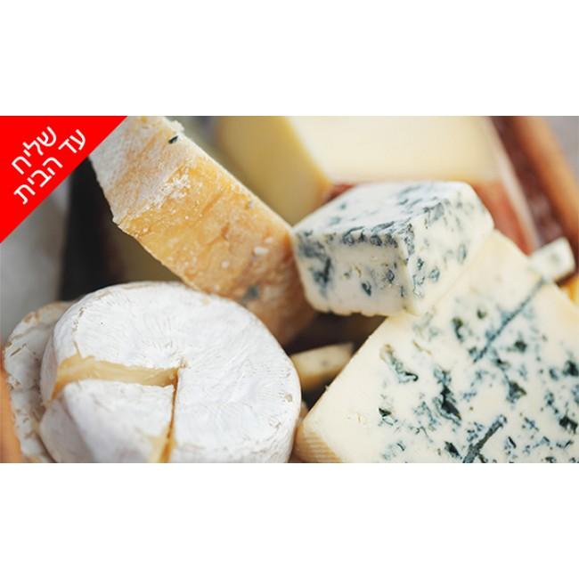 מארז גבינות נויה ממעדניית הבוטיק ברמלה 'מוצרלה - הגבינות של שלומי' מלאבנה מסבחה עד גאודה הולנדית  משלוח חינם
