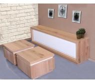 מזנון ושולחן דגם סליני